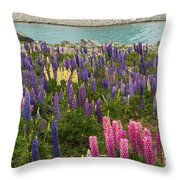 Rainbow Of Color Throw Pillow