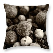 Rainbow Peppercorn Macro Throw Pillow