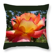 Rainbow Sorbet Rose Close Up Throw Pillow by Denise Mazzocco