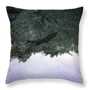 Rainbow Trout Throw Pillow by Les Cunliffe