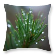 Raindrops On Pine Throw Pillow