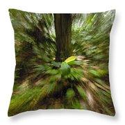 Rainforest Andes Mountains Ecuador Throw Pillow