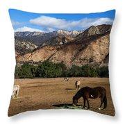 Rancho Oso - California Throw Pillow