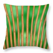 Rattan - Homely Throw Pillow