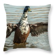 Readdy For Take Off Throw Pillow