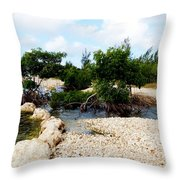 Reclamation 6 Throw Pillow