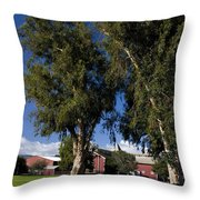 Red Barn Stanford University Throw Pillow