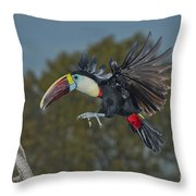 Red-billed Toucan Throw Pillow