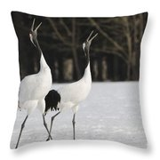 Red-crowned Cranes Courting Throw Pillow