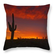 Red Desert Skies  Throw Pillow