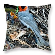 Red-faced Warbler At Nest With Young Throw Pillow