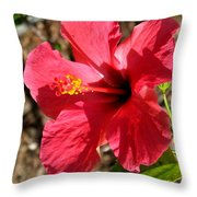 Red For Love Throw Pillow