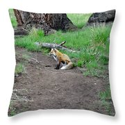 Red Fox In Yellowstone Throw Pillow