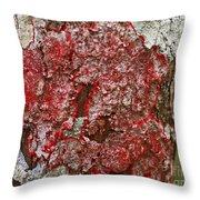 Red Lichen  Throw Pillow