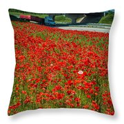 Red Poppy Field Near Highway Road Throw Pillow