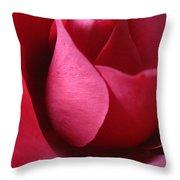 Red Rose Macro 5 Throw Pillow