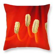 Red Stamens Throw Pillow
