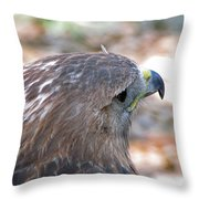 Red Tailed Hawk 2  Throw Pillow