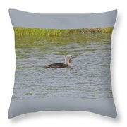 Red-throated Loon Throw Pillow