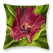 Red Tropical Tree Flower Throw Pillow