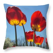 Red Tulips With Blue Sky Background Throw Pillow