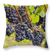 Red Wine Vineyard 4 Throw Pillow