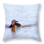 Redthroated Loon Throw Pillow