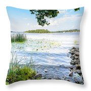 Reeds And Dnieper River Throw Pillow