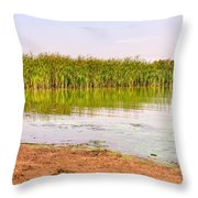 Reeds Close To The Shore Throw Pillow