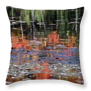 Reflecting Fall Throw Pillow