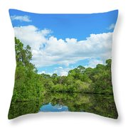 Reflection Of Trees And Clouds In South Throw Pillow