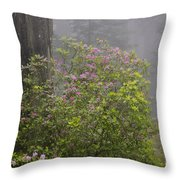 Rhododendron In Del Norte State Park, Ca Throw Pillow