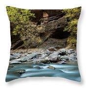 River Flowing Through Rocks, Zion Throw Pillow