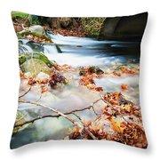 River Flowing Under Stone Bridge Throw Pillow