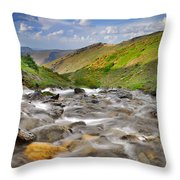 River San Juan  Throw Pillow by Guido Montanes Castillo