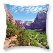 River Through Zion Throw Pillow