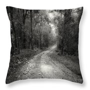 Road Way In Deep Forest Throw Pillow