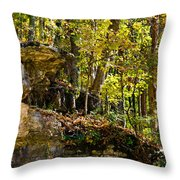 Rock Shelf And Forest Throw Pillow
