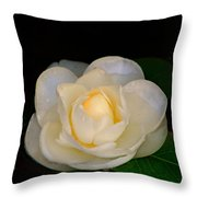 Romance In Bloom Throw Pillow