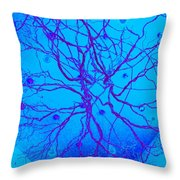 Roots Throw Pillow by Randall Weidner