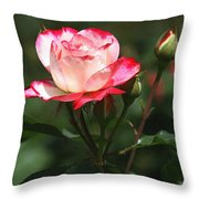 Rose And Bud At Mcc Throw Pillow