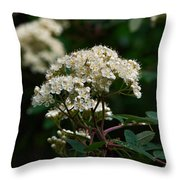 Rowan Flowers Throw Pillow