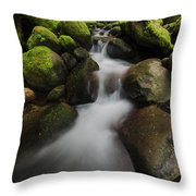 Ruckel Creek  Oregon, United States Throw Pillow