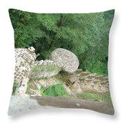 Rud-khan Castle Throw Pillow