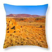 Ruins Of 900 Year Old Hopi Village Throw Pillow