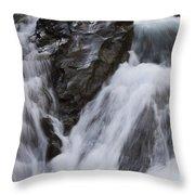 Run River Run 3 Throw Pillow