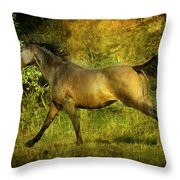 Running Free Throw Pillow