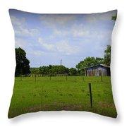 Rural Florida Throw Pillow