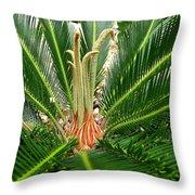 Sago Palm Throw Pillow