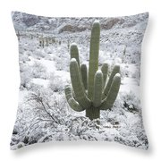 Saguaro Cactus After Rare Desert Throw Pillow